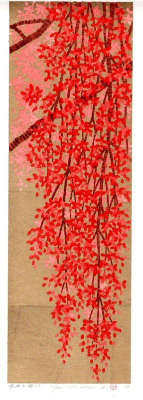 Weeping cherry-23