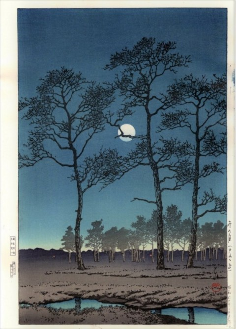 Winter moon,  Toyamagahara